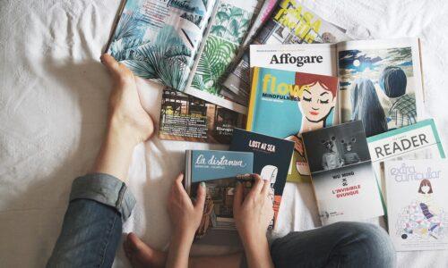 Reading Books Magazine Study Hands - StockSnap / Pixabay